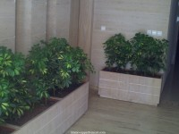 Appartement à kenitra de 3 chambres  de  pour 830000